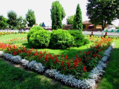 Итоги  областного этапа республиканского конкурса по озеленению  и благоустройству территорий «Украсим Беларусь цветами»