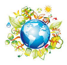 Областной слет юных экологов «Исследователи природы»