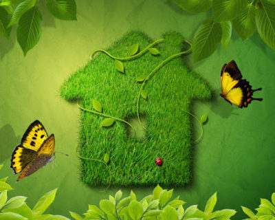 Итоги  областного этапа республиканского дистанционного конкурса  по интерьерному дизайну «Зеленый дом»